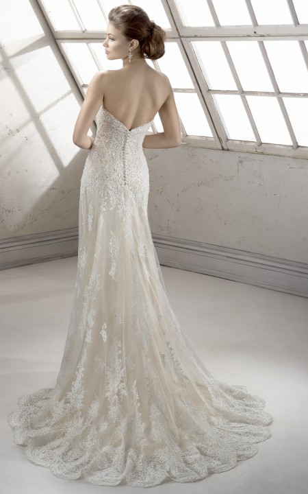 Sottero and Midgley – Viera 2